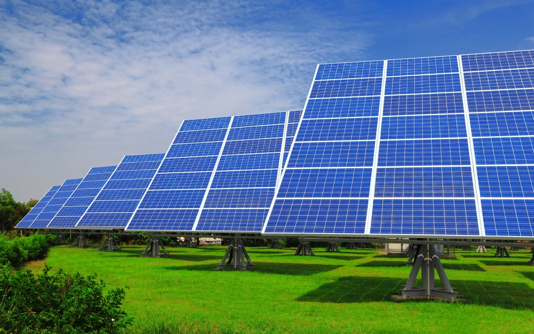 solar absorbers and the future of electricity essay Conservation of energy collectors or absorbers the advantages of using solar the renewable energy sources have good chances for the future energy.